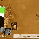 قالب بلاگفا محمد رضا گلزار