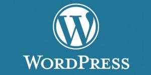 کد عنوان سایت در وردپرس