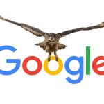 پروژه جغد گوگل