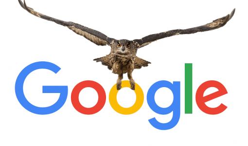 joghd google